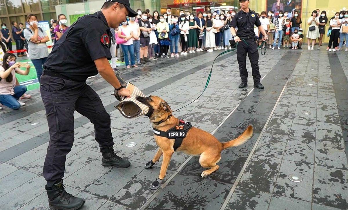 台中大遠百和警六分局辦活動 萌犬上陣很吸睛
