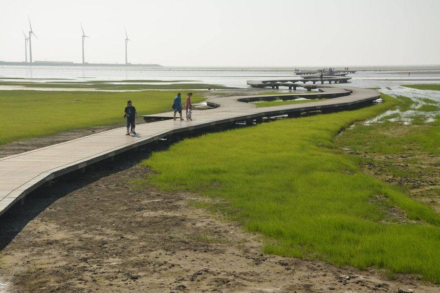 春節連假人流管制 高美濕地木棧道最多900人